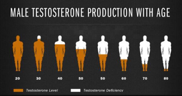 Pourquoi la testostérone diminue avec l'âge ?