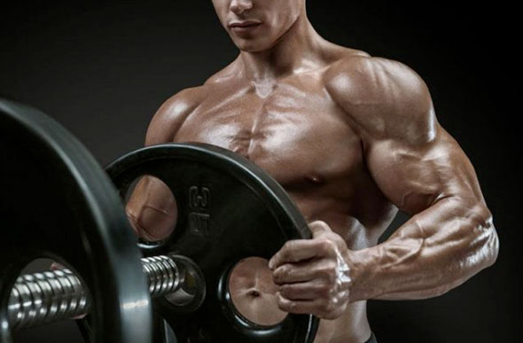 Quel est l'impact de l'entrainement sur les niveaux de testostérone ?