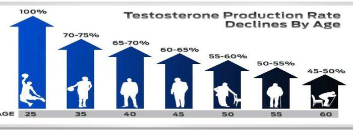 La production naturelle de testostérone chez l'homme.