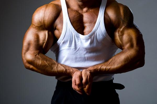 Testostérone et musculation : l'augmenter pour gagner en masse musculaire