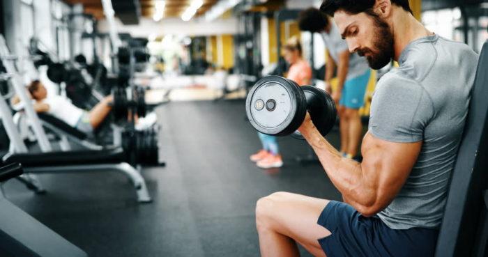 entraînement muscles