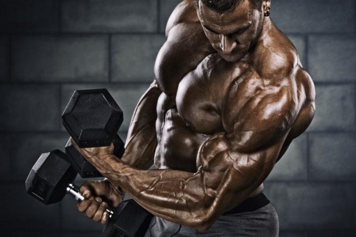 testostérone biodisponible